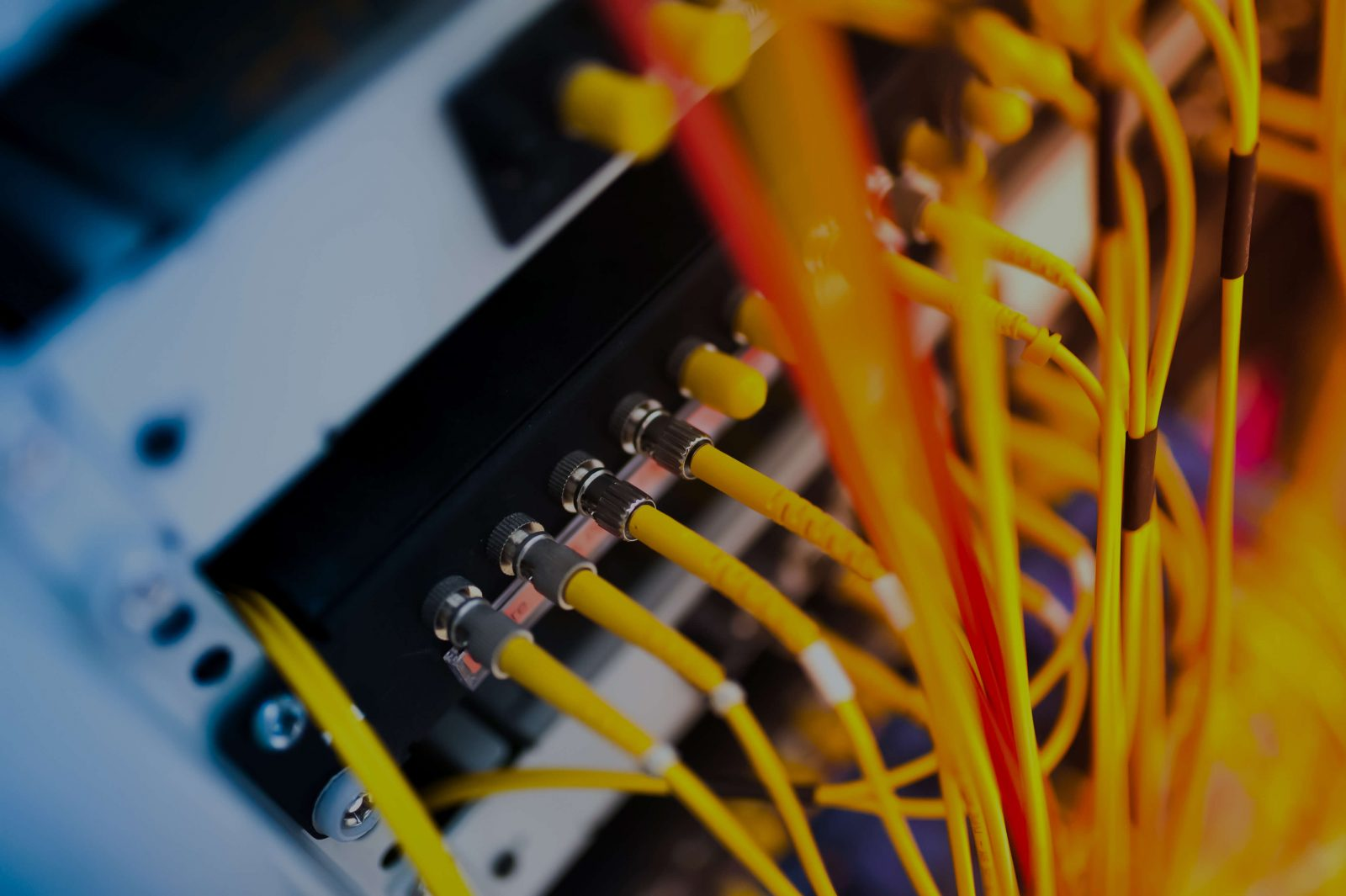 Complicated yellow server cables
