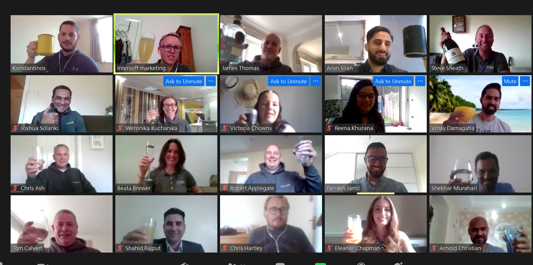 The Intersoft team on Zoom